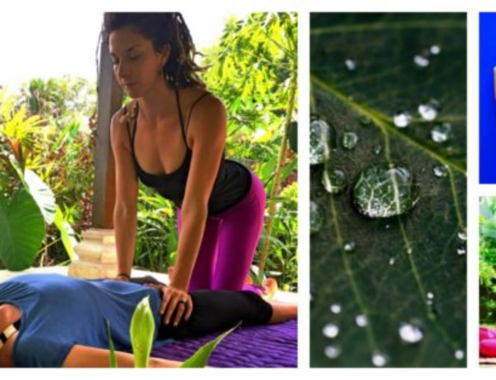 Thai Yoga Massage Training